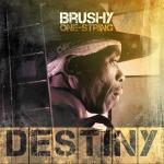 Brushy One String's Destiny