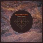 Tigana Santana - Tempo & Magma